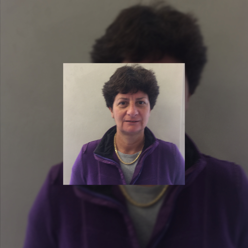 Hélène Bonnemain